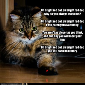 O Bright Red Dot Song.