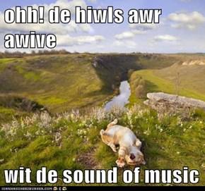 ohh! de hiwls awr awive  wit de sound of music