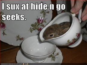I sux at hide n go seeks.
