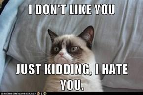 I DON'T LIKE YOU  JUST KIDDING, I HATE YOU.