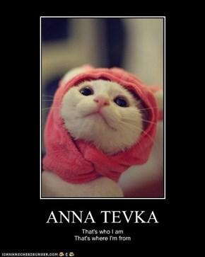 ANNA TEVKA