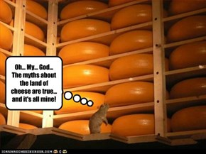 Oh... My... God... The myths about the land of cheese are true... and it's all mine!