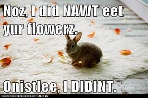 Noz, I did NAWT eet yur flowerz.