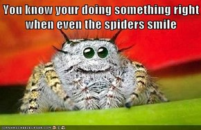 You know your doing something right when even the spiders smile