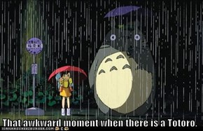 That awkward moment when there is a Totoro.