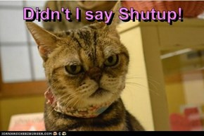 Didn't I say Shutup!