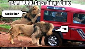 TEAMWORK: Gets things done
