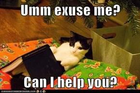 Umm exuse me?  Can I help you?
