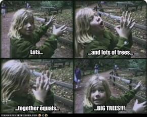 ...BIG TREES!!!