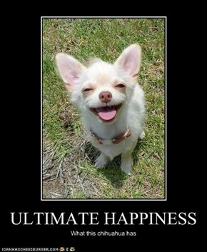 ULTIMATE HAPPINESS