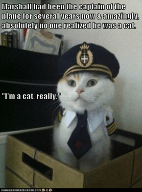 "Marshall had been the captain of the plane for several years now & amazingly, absolutely no one realized he was a cat. ""I'm a cat, really."""