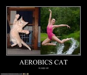 AEROBICS CAT