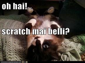 oh hai! scratch mai belli?