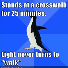 "Stands at a crosswalk for 25 minutes.  Light never turns to ""walk"""