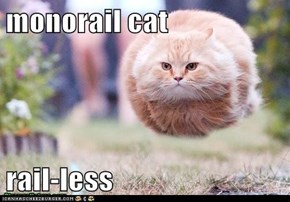 monorail cat  rail-less
