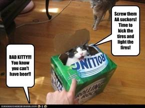 Kitty fall off wagon.