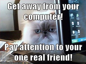 Get away from your computer!  Pay attention to your one real friend!