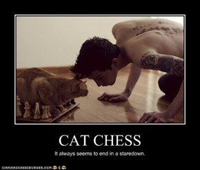 CAT CHESS