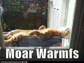 Moar Warmfs