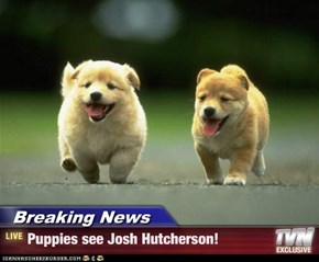 Breaking News - Puppies see Josh Hutcherson!