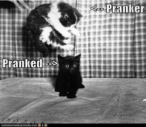 <-- Pranker Pranked -->