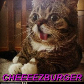 CHEEEEZBURGER