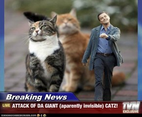 Breaking News - ATTACK OF DA GIANT (aparently invisible) CATZ!