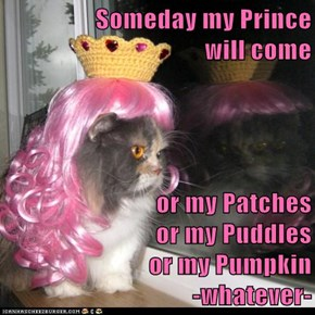 Someday my Prince                                       will come  or my Patches                              or my Puddles                             or my Pumpkin                              -whatever-