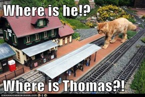 Where is he!?  Where is Thomas?!