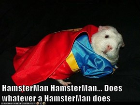 HamsterMan HamsterMan... Does whatever a HamsterMan does