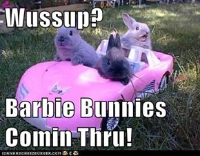 Wussup?  Barbie Bunnies Comin Thru!