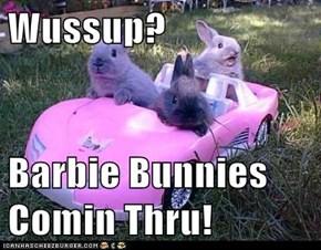 Wussup?  Barbie Bunnies Comin Thru!