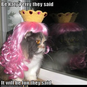 Be Katy Perry they said