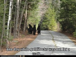 one day while goldilocks was out for a walk.....