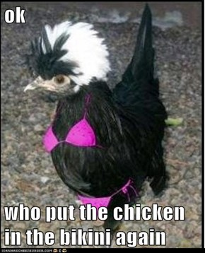 ok  who put the chicken in the bikini again