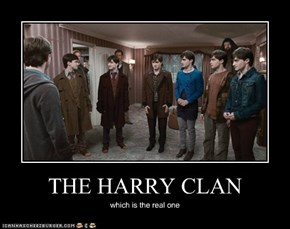 THE HARRY CLAN