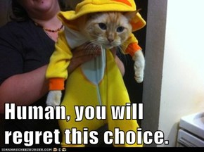 Human, you will regret this choice.