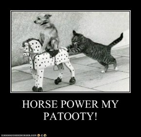 HORSE POWER MY PATOOTY!