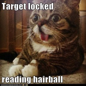 Target locked  reading hairball