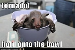 tornado!  hold onto the bowl