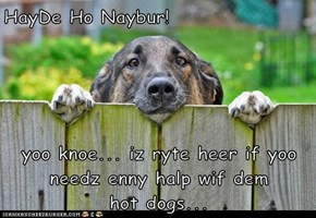 HayDe Ho Naybur!  yoo knoe... iz ryte heer if yoo needz enny halp wif dem          hot dogs...