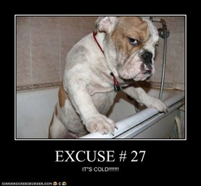 EXCUSE # 27