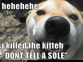 "hehehehe  i killed the kitteh ""DONT TELL A SOLE"""
