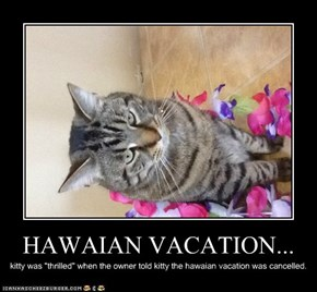 HAWAIAN VACATION...