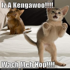 Iz A Kengawoo!!!!  Wach Meh Hop!!!!