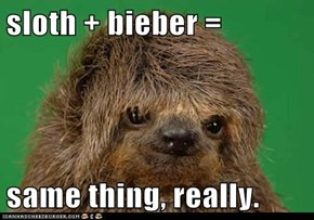 sloth + bieber =  same thing, really.