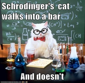 Schrodinger's  cat walks into a bar             And doesn't
