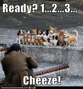 Ready? 1...2...3...  Cheeze!