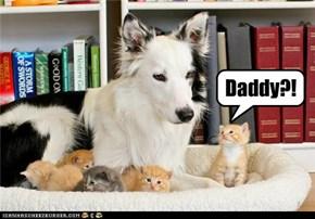 Daddy?!