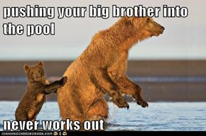 pushing your big brother into the pool  never works out